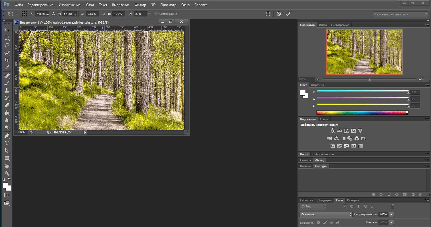 Как из картинки вырезать объект в фотошопе