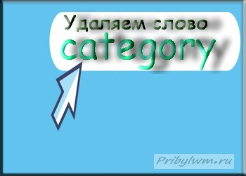 Как и зачем нужно убрать category из WordPress блога?
