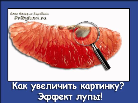 Плагин Лупа Wordpress