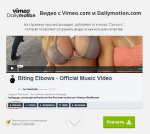 скачать видео с vimeo и dailymotion