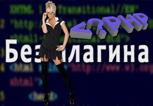 вставить php код в wordpress