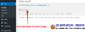 How to fix common image issues in WordPress Add Image To Blog Post1