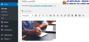 How to fix common image issues in WordPress Adding images to blog post 6