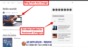 How to fix common image issues in WordPress Image not visible in blogroll 1