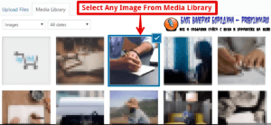 How to fix common image issues in WordPress adding alt text description and other details