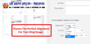 How to fix common image issues in WordPress choose perfect alignment for your blog post