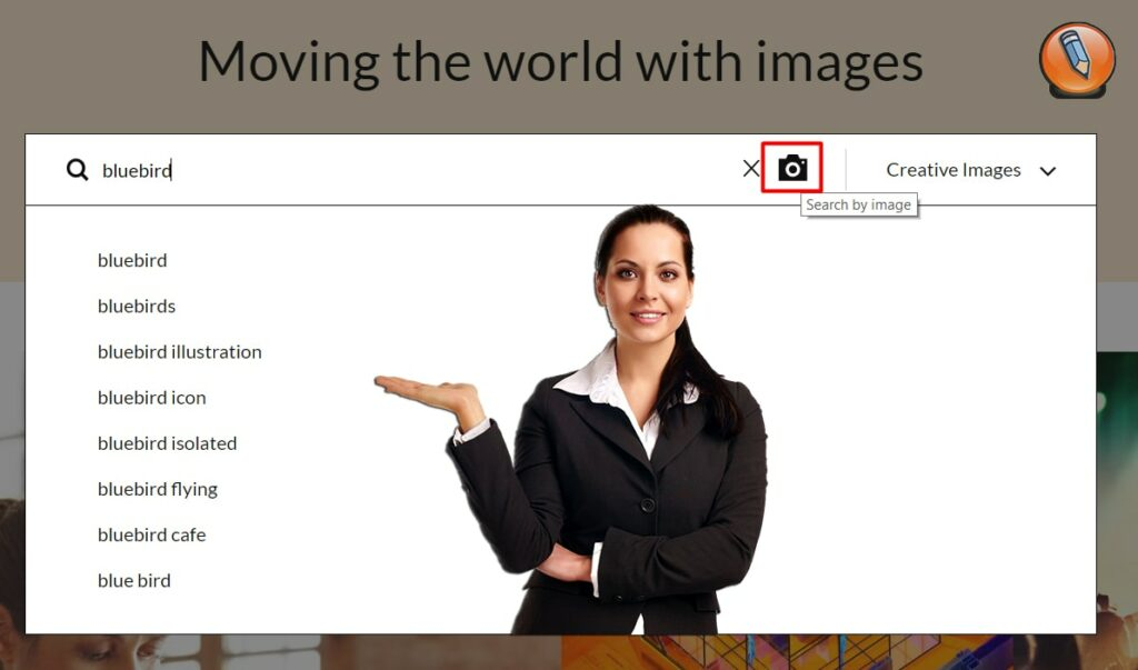 getty images search options