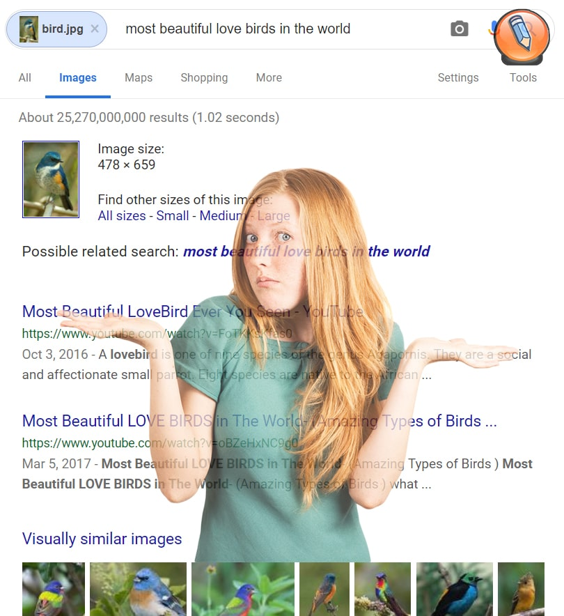 google images reverse image search2