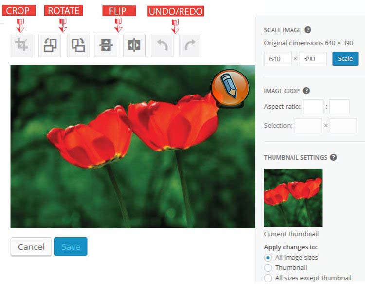 картинка WordPress функции поворота